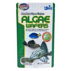 Hikari Algae Wafers 20gm